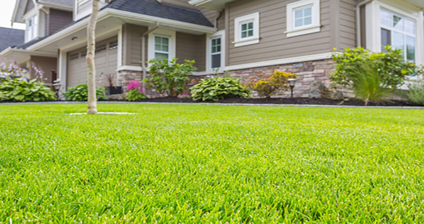 lawn-mowing-service-central-coast