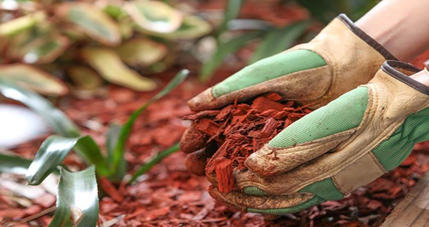 mulch-service-central-coast-nsw