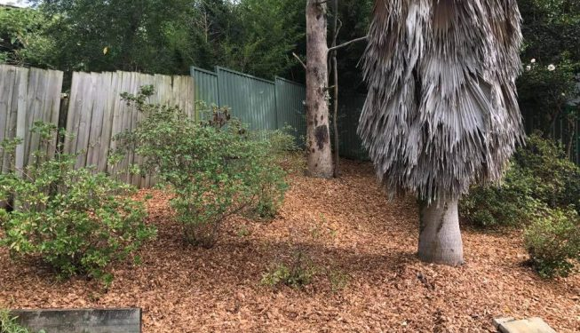 gardenmaintenance-cleanup-centralcoast