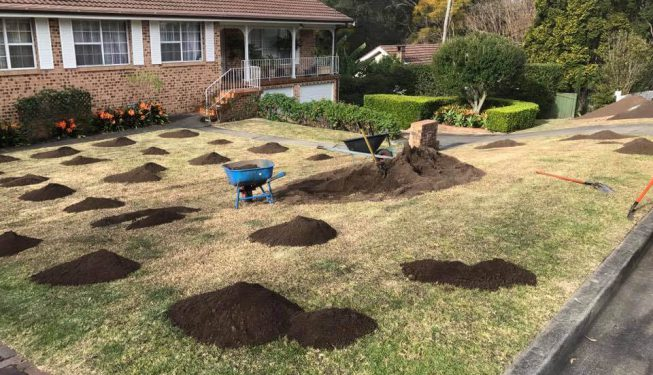lawnmaintenance-centralcoast-lisarow-narara-wyoming-kariong-bateaubay-terrigal