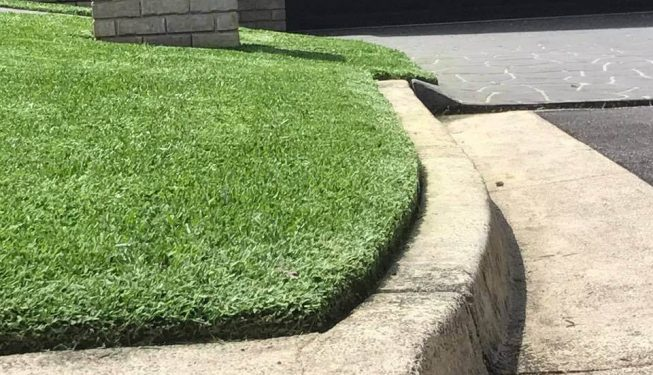 lawnmaintenance-centralcoast-lisarow